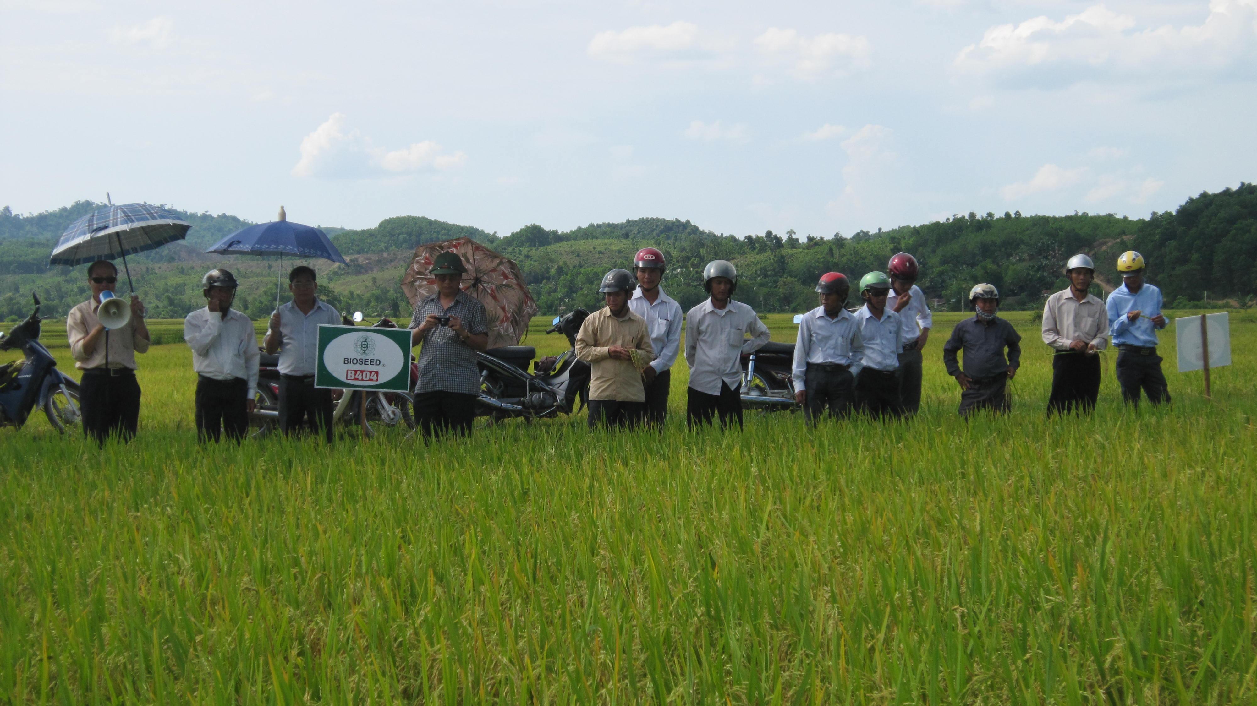 Phụ nữ Hương Khê chung tay xây dựng nông thôn mới, đô thị văn minh