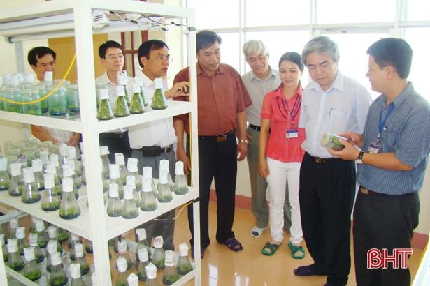 Công tác du nhập các giống mới vào sản xuất góp phần phát triển nền nông nghiệp tỉnh. (Trong ảnh: Nguyên Bộ trưởng Bộ KH&CN Nguyễn Quân tham quan Trung tâm Ứng dụng tiến bộ KH&CN Hà Tĩnh).