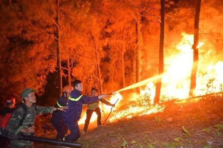 Lực lượng quân sự phối hợp với các lực lượng chức năng tiến hành chữa cháy rừng tại xã Xuân Hồng, huyện Nghi Xuân