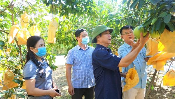 Huyện Hương Khê thực hiện nhiệm vụ chính trị và công tác xây dựng Đảng đạt nhiều kết quả tích cực